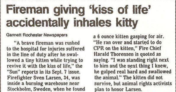 """Fireman giving 'kiss of life' accidentally inhales kitty, Gannett Rochester Newspapers.  """"A brave fireman was rushed to the hospital for injuries suffered in the line of duty after he swallowed a tiny kitten while trying to revive it with the kiss of life,"""" the """"Sun"""" reports in its Sept. 7 issue.  Firefighter Steve Larsen, 34, was inside a burning warehouse near Stockhold, Sweden, when he found a 6 ounce kitten gasping for air. """"He ran over and started to do CPR on the kitten,"""" Fire Chielf Harald Thorenson is quoted as saying. """"I was standing right next to him and the next thing I knew, he gulped real hard and swallowed the animal."""" The kitten did not survive, but animal rights activists plan to honor Larsen."""