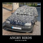 Angry Birds: The Reality Show