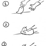 Dating 102: The Illustrated Guide to Picking Up Chicks