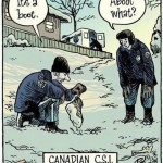 A Difficult Time at CSI-Canada