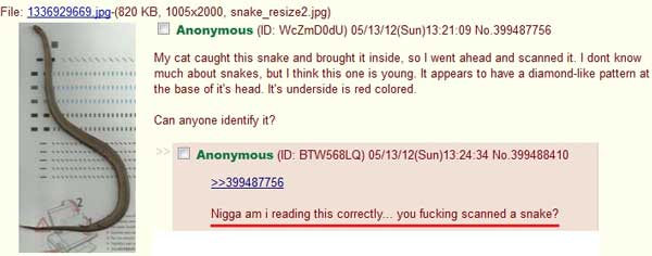 """""""Nigga am I reading this correctly ... You fucking scanned a snake?"""""""