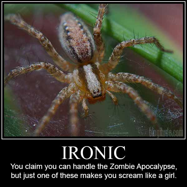 Ironic: You claim you can handle the Zombie Apocalypse, but justone of these makes you scream like a girl.