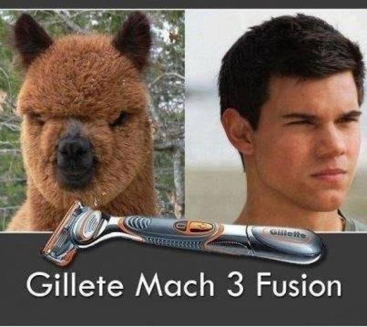Team Jacob: Gillete Mach 3 Fusion