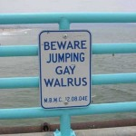 Walrus Target of Sexual Preference Discrimination