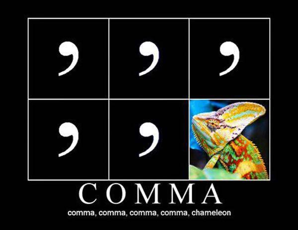 Comma, comma, comma, comma, comma Chameleon