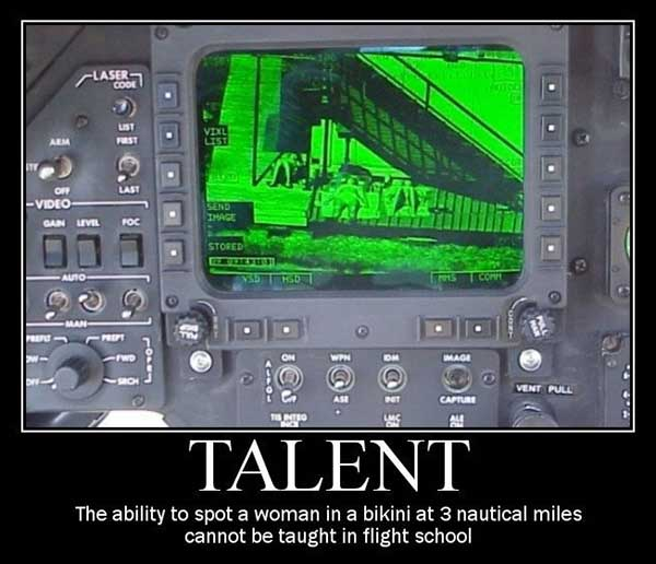 Talent: The ability to spot a woman in a bikini at three nautical miles cannot be taught at flight school