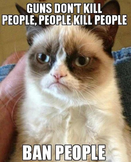 Grumpy Cat: Guns Don't Kill People. People Kill People. Ban People.