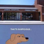 China Chef: In the Strip Mall Next to the Animal Hospital