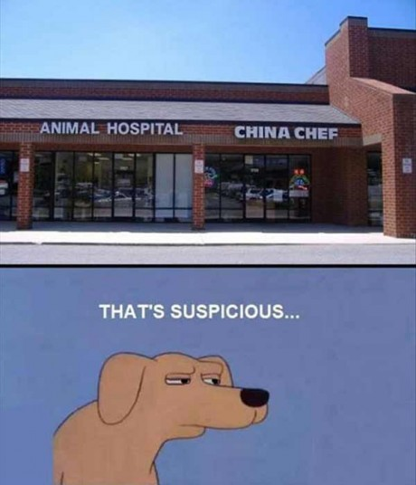 Animal Hospital beside a Chinese Restaurant? That's suspicious...