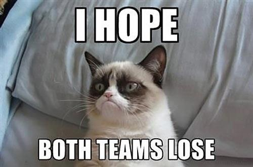 Grumpy Cat: I Hope Both Teams Lose
