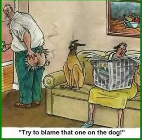 """Farted: """"Try to blame that one of the dog!"""""""