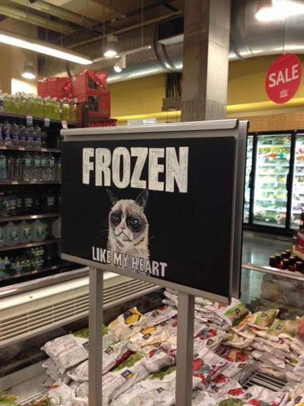 """Grumpy Cat in the Freezer Section: """"Frozen. Like my heart."""""""
