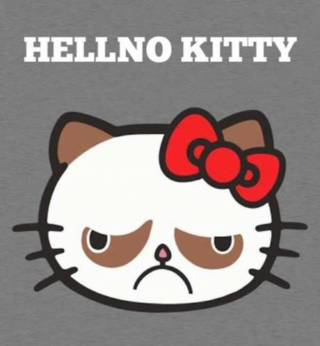 Hello Kitty?  Hellno Kitty.