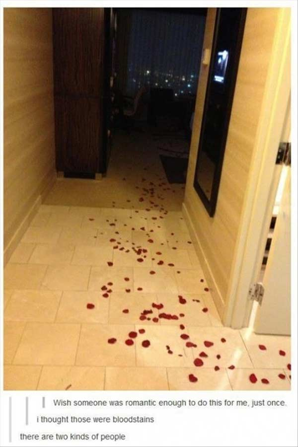 """Rose Petals Leading to the Bed: """"Wish someone was romantic enough to do this for me, just once."""" """"I thought those were bloodstains."""" """"There are two kinds of people..."""""""