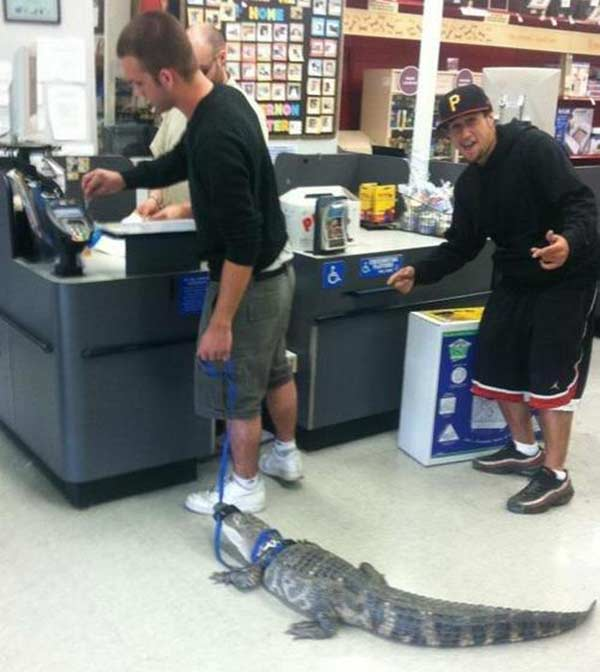 People of Sam's Club: Guy With an Alligator
