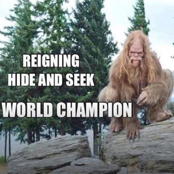 Bigfoot: Reigning Hide And Seek World Chamption