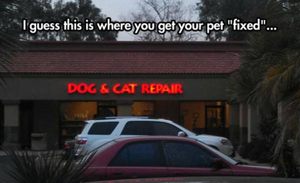 """I guess this is where you get your pet """"fixed"""".... """"Dog & Cat Repair"""""""