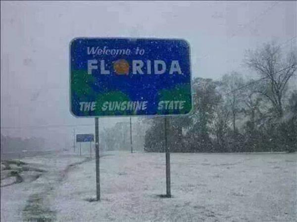 Welcome to Florida: The Sunshine State