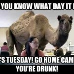What Day is This?