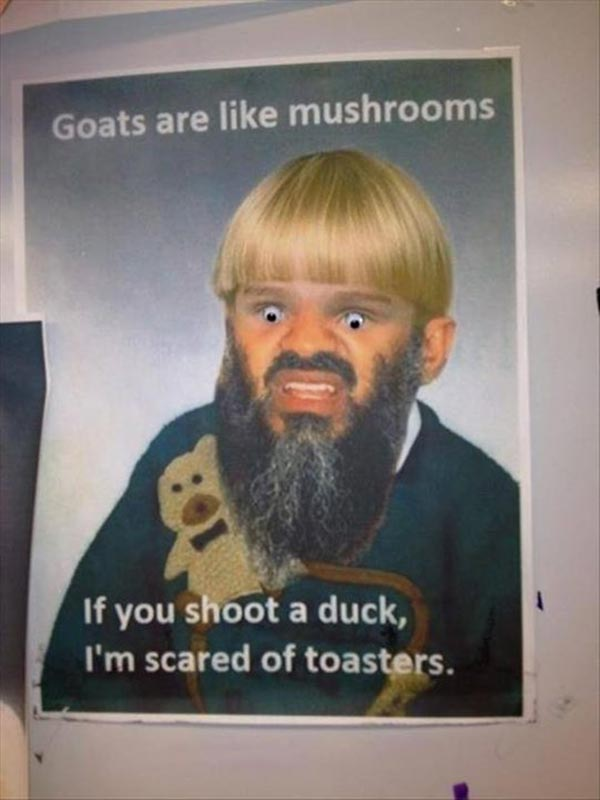 Goats are like Mushrooms.  If you shoot a duck, I'm scared of toasters.