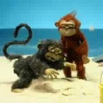 Question: Why Would Anyone Google 'crazy monkey'?