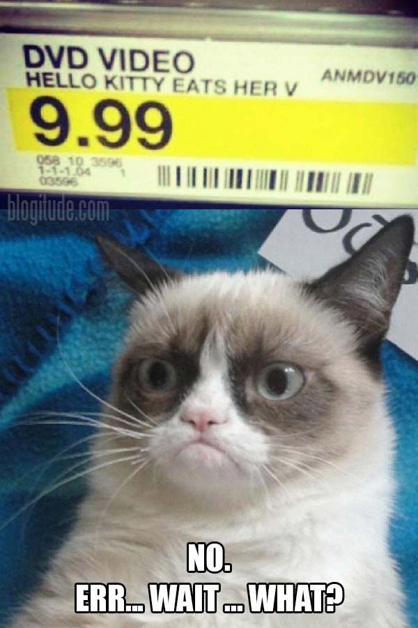 """Target Price Tag: """"DVD Video, Hello Kitty Eats her V, 9.99""""  Grumpy Cat's Response: """"No. Err... Wait.. What?"""""""