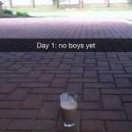 Milkshake Not Bringing Enough Boys to the Yard?