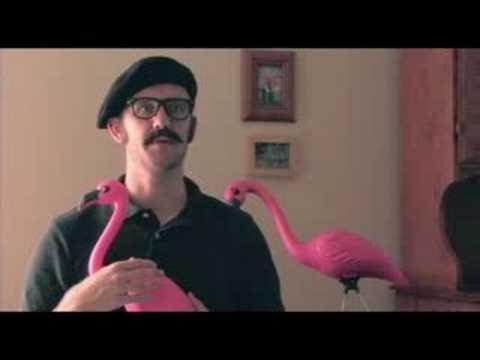 Pink Flamingo Passes Away
