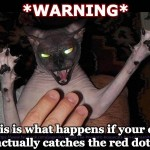 Don't Let Your Cat Catch the Red Dot!