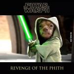 Phteven in Yoda Cosplay