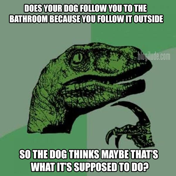 Philosoraptor: Does your dog follow you to the bathroom because you follow it outside, so the dog thinks maybe that's what it's supposed to do?