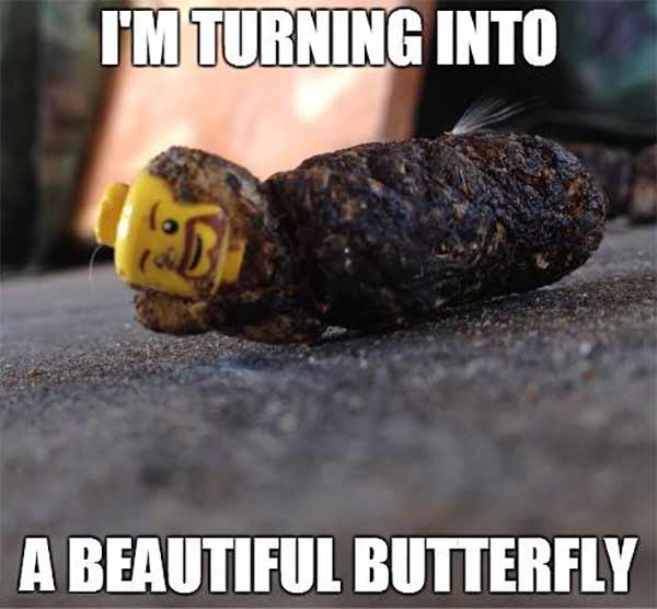 Lego: I'm Turning Into a Beautiful Butterfly!