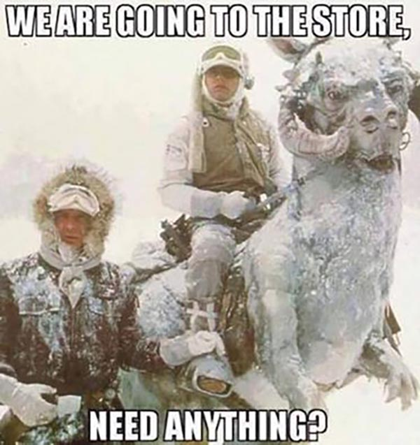 We are going to the store... Need anything?